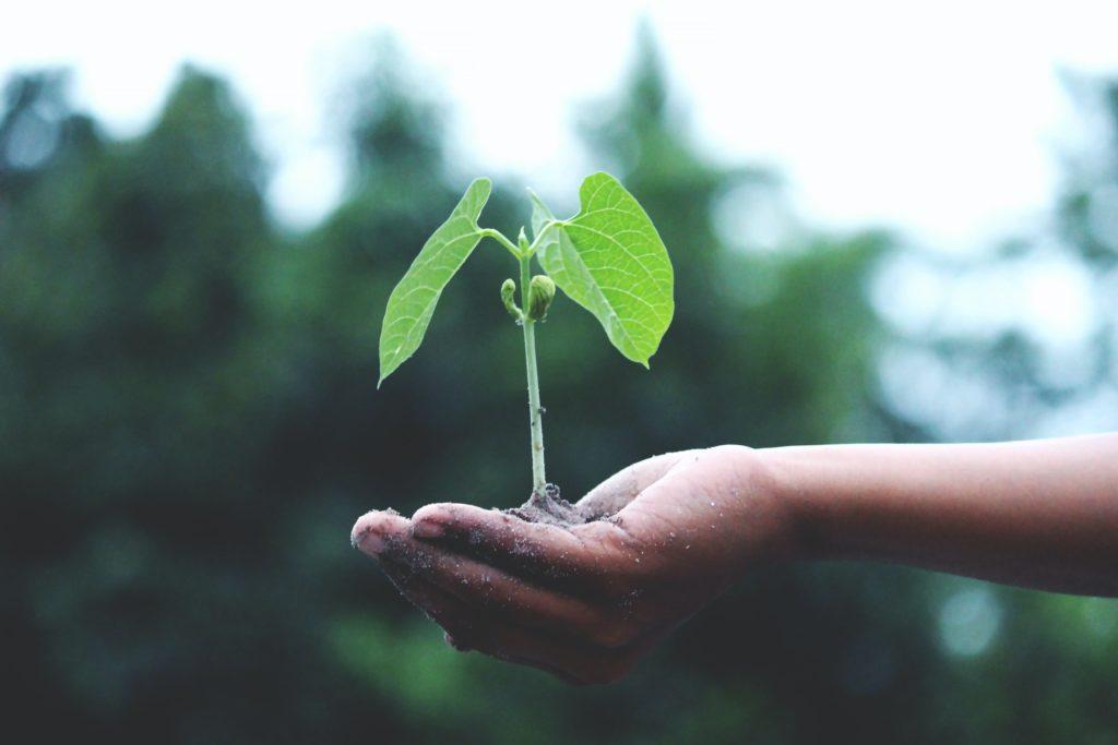 Sustainability - เรื่องของความยั่งยืน บริษัทหรือองค์กร เขาวัดกันเรื่องนี้อย่างไร?
